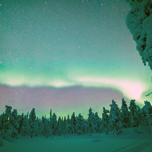 Best of Northern Lights: Maximum chances of seeing the Aurora