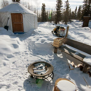 Dog Sledding Expedition: Mushing historic trapper trails across Yukon