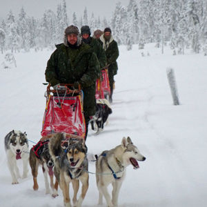 Early Winter Training with Huskys